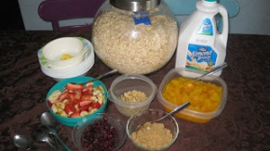 oatmeal bar